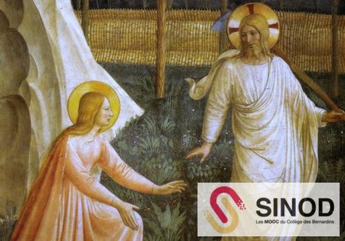 Sinod MOOC Création