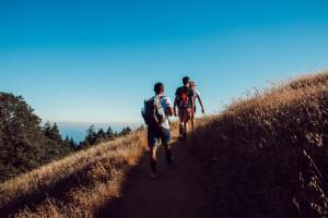 Un groupe de jeunes adultes en randonnée dans la montagne.