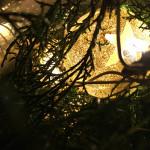 Décoration de Noël dans un sapin.