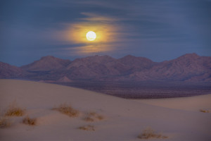 Le désert, à l'aube.