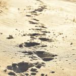 « Le même jour, deux disciples faisaient route vers un village appelé Emmaüs, à deux heures de marche de Jérusalem, et ils parlaient entre eux de tout ce qui s'était passé. » Lc 24, 13-14.