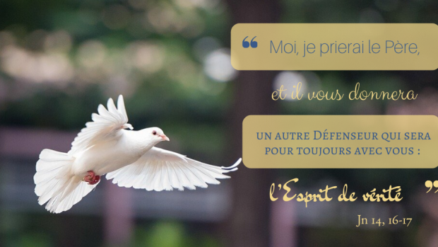 « Moi, je prierai le Père, et il vous donnera un autre Défenseur qui sera pour toujours avec vous : l'Esprit de vérité. » (Jn 14, 16-17), 6ème dimanche du Temps pascal, année A.
