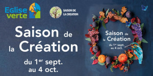 saison-creation