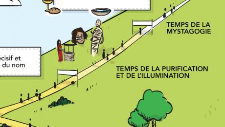 purification-illumination